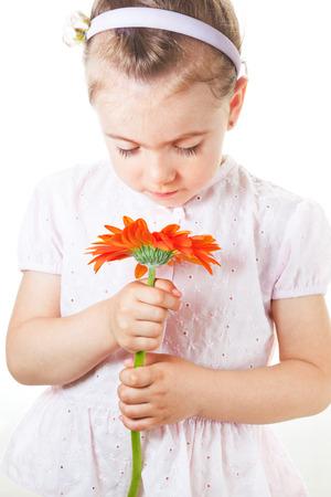 herbera: Litle girl smiling or looking at flower