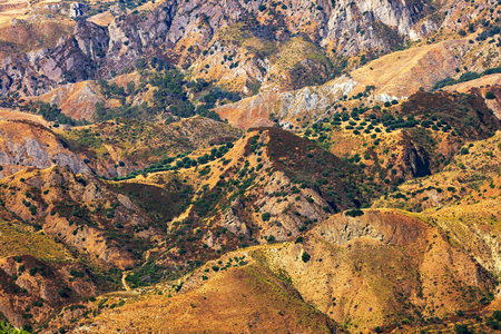 torrid: Colorfull dry hills of Aspromonte with olive hills