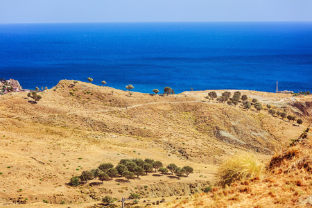 Typical dry terrain in Calabria against deep blue sea. Focus on a group of olive trees
