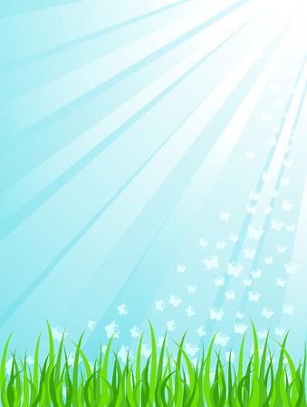 Green grass under sunrays Vector