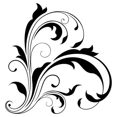 floral swirls: Design element Illustration