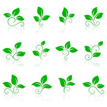 silueta hoja: Iconos de naturaleza 2. Iconos de color verdes o logotipos.  Vectores