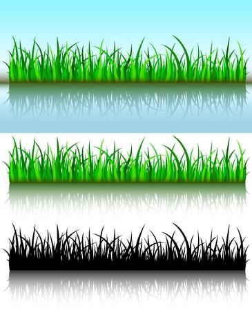 praterie: Pennelli Grass Vettoriali