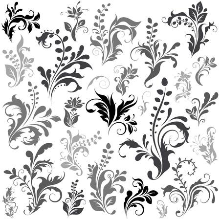 Elementos de diseño de un Swirly Ilustración de vector