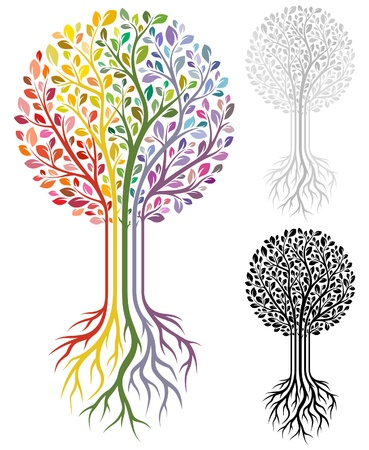 pflanze wurzel: Baum