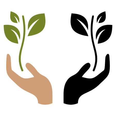 hand holding plant: Hand holding young plant Illustration