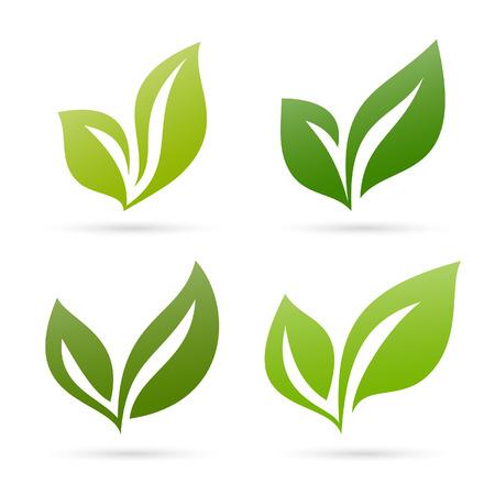 original ecological: Leaves set 1