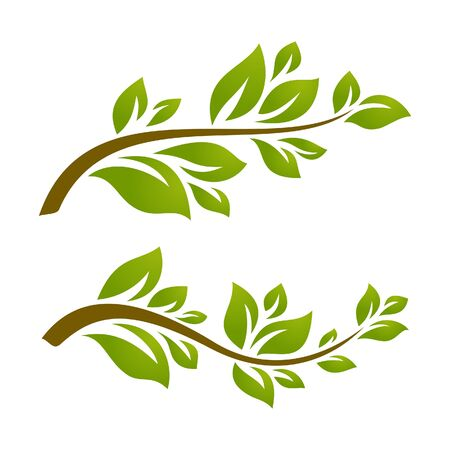 original ecological: Twigs with leaves