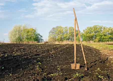 garden shovel and a rake face on the plowed ground on a country garden