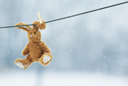 fastened:  soft toy rabbit hanging from a rope wearing a clothespin on the ear Stock Photo