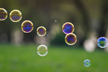 festive background with lots of bright iridescent soap bubble with reflections flying over on a bright summer meadow on a Sunny day Stockfoto
