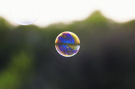 Helle, schillernde Seifenblase mit Reflexionen des Fliegens auf einer hellen Sommerwiese an einem sonnigen Tag