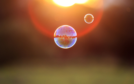 beautiful iridescent soap bubble with reflection landscape flies to sunset over summer meadow Stockfoto