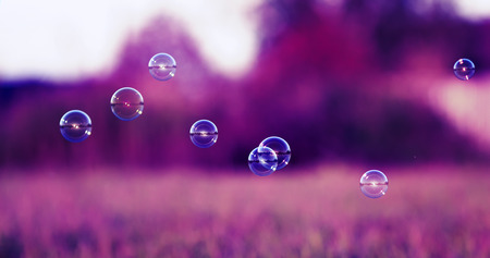 beautiful festive background with iridescent soap bubbles flying over a sun-drenched meadow in the purple