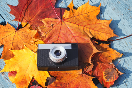 old camera lays on a beautiful background of colorful autumn leaves on a wooden table