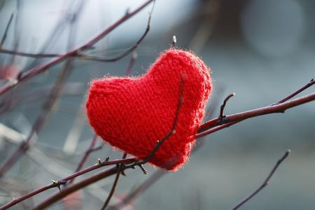 rode feestelijke mooie gebreide hart opknoping tussen de takken van rode bessen van wilde roos in de wintertuin