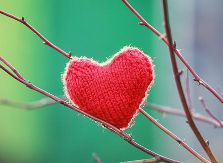 feestelijk mooi gebreid hart dat op de takken van een boom hangt