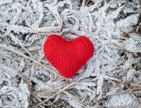 een scharlaken gebreid hart op de achtergrond van het droge gras van afgelopen jaar is bedekt met prachtig ijzig wit met ijspegels