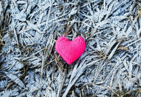 roze gebreide hart ligt vorig jaar verdorde gras bedekt met blauwe ijsvorst