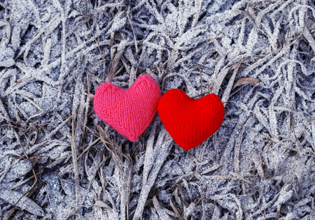 two knitted hearts pink and red lie on last years grass covered with white beautiful frosty icicles