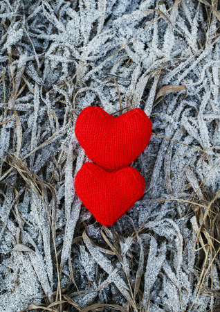 a pair of red knitted hearts are at last years withered grass covered with a white frosty icicles