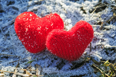 two red hearts connected from yarn on a background of grass covered with white fluffy elegant frost