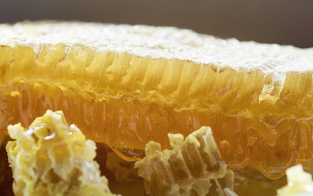 slices of delicious Golden honeycomb, with the resulting sticky sweet bright and fragrant honey