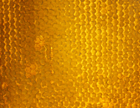 bright Golden background of bee honeycombs filled with sweet sticky honey