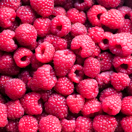 square delicious natural background of many ripe juicy red fragrant raspberry berries