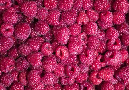 bright delicious natural background of many ripe juicy red fragrant raspberry berries Stockfoto