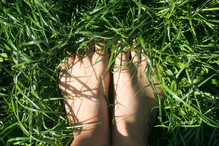 top view of female feet immersed in the lush green grass lawn in the spring yard
