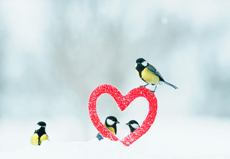 beautiful festive Valentine with many birds chickadees fly from the symbolic frame of love in the form of red heart