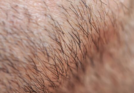 male skin texture covered with fine and coarse hairs and bristles Foto de archivo