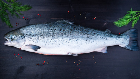whole fresh raw big salmon fish on dark black wooden table, top view