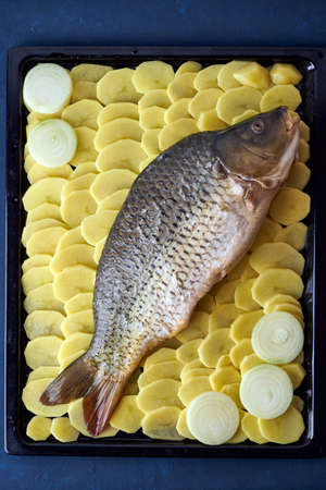 Raw carp, whole fish with sliced potatoes on large tray on dark blue background. Traditional European Polish dish, suitable for a Christmas table, vertical