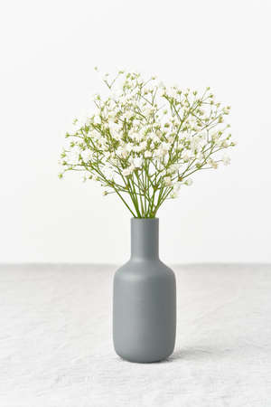 Gypsophila flowers in a vase. Soft light, Scandinavian minimalism,