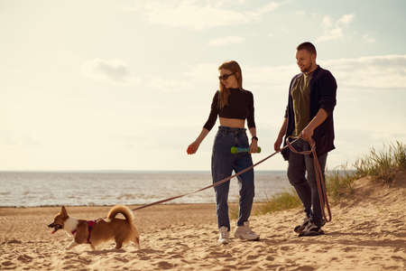 Young happy couple and dog standing along beach. Man with woman looking away and holding Corgi puppy on leash. Summer walk in nature of people in love on weekend. Full length peoples Stockfoto