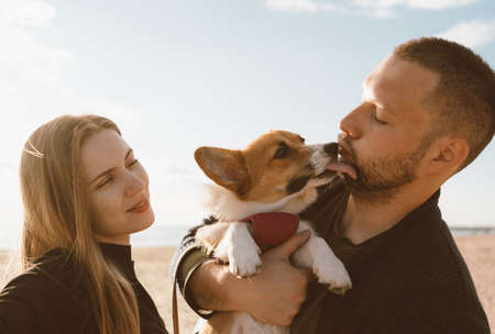 Young happy couple with dog taking selfie photo on beach. Beautiful family and Corgi puppy lick man cheek. Family with pet outdoor, walking together, husband and wife relax in summer by sea Stock fotó