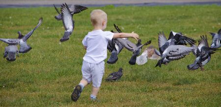 pigeons: child and pigeons