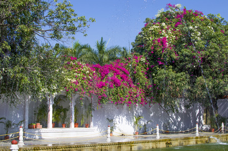 ki: The beautiful blossoming garden in Udaipur Sahelion Ki Bari Stock Photo