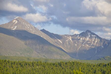 taiga against the background of the high mountains