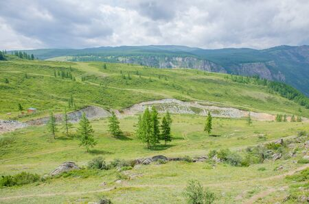 Landscape of taiga in summer among mountains Altai Russia Stock Photo