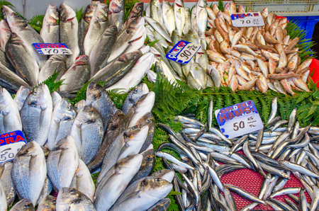 Fresh sea fish small and large on the market