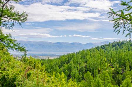 The mountain with snow top among a taiga Mountain Altai Siberia