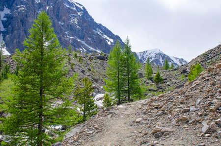 Mount North Chuya Range and small Aktru River Mountain Altai Siberia 免版税图像