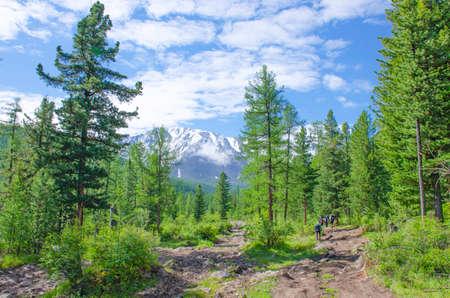 Tourist man goes to mountains glacier Aktru Russia 免版税图像