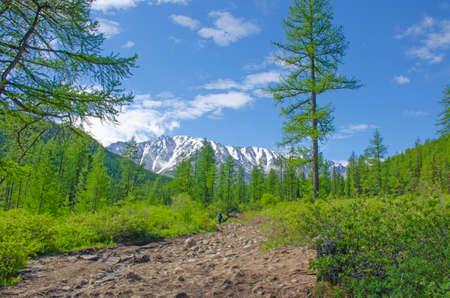 landscape a track goes to the mountains on a glacier to Aktr Altai Russia