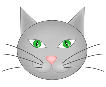 Muzzle of a grey cat, close up Stock Photo - 3483972