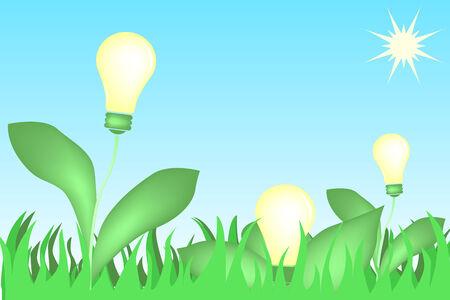 bulbs flowers Stock Vector - 4660176