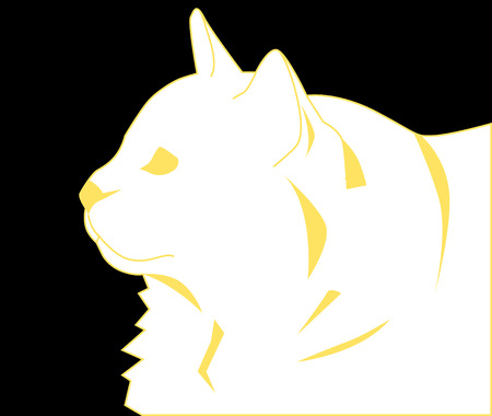 portrait of a white cat close up Vector